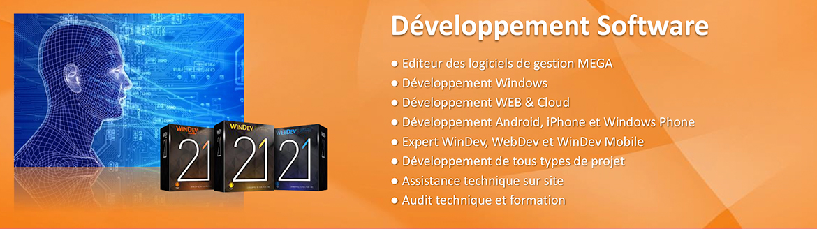 developpement-software2